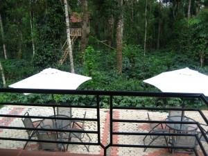 View of communal patio and tree house from cottage porch.