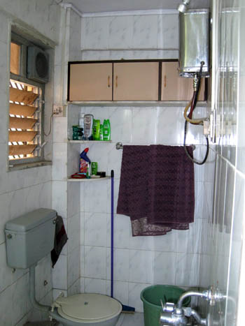 Post image for Introducing the Typical Indian Bathroom