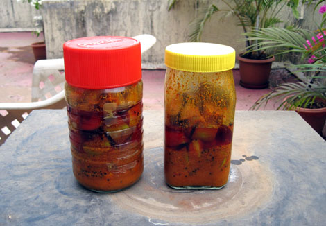 Post image for Mango Pickle Drying on the Terrace